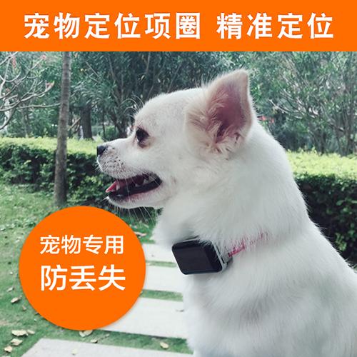 上海星迈宠物GPS定位器